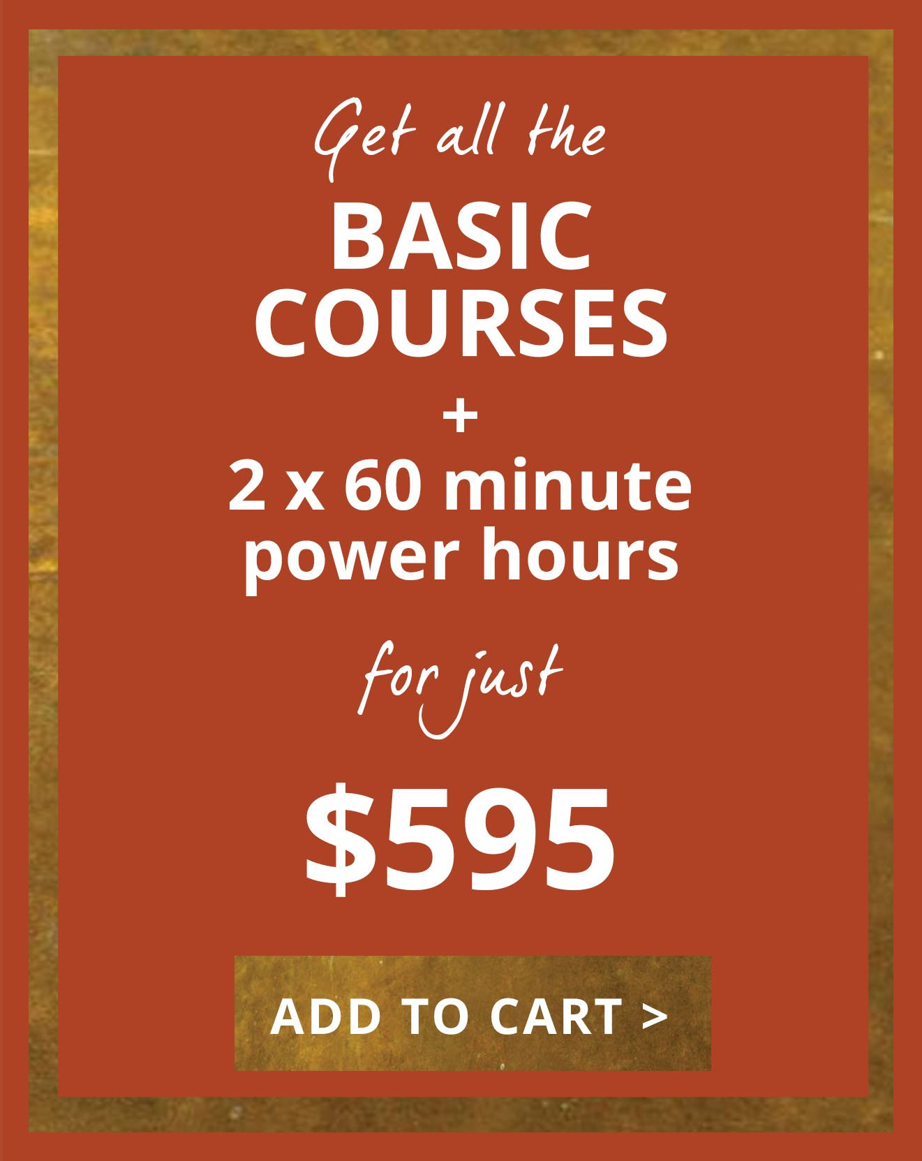 Basics Bundle with Power Session